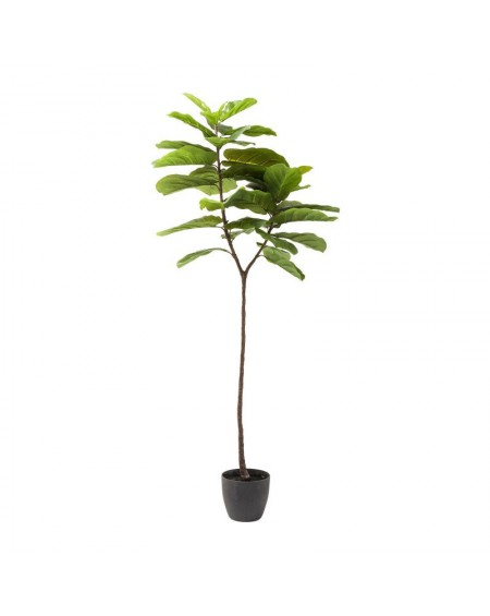 PLANTA DECORATIVA LEAF TREE