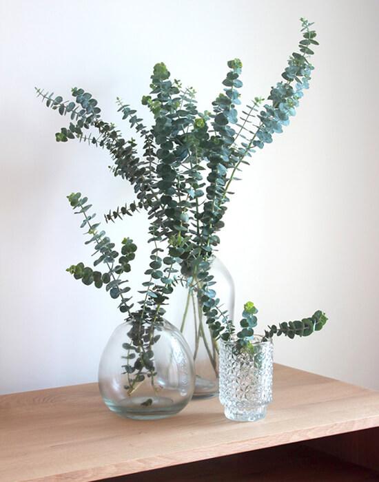 Vasijas, jarrones y damajuanas transparentes de vidrio