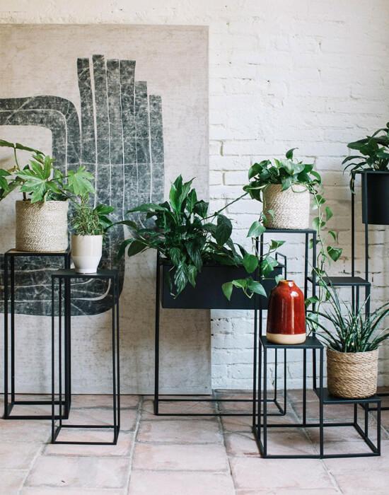 Soporte y maceta para plantas